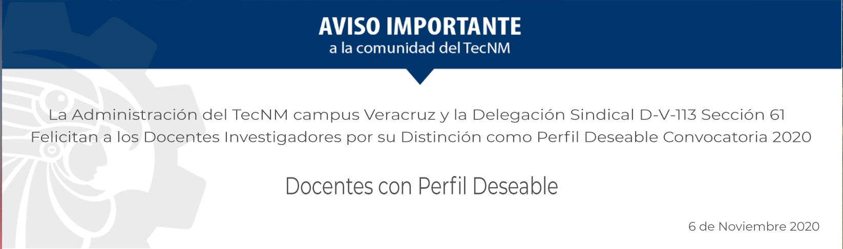 Docentes con Perfil Deseable