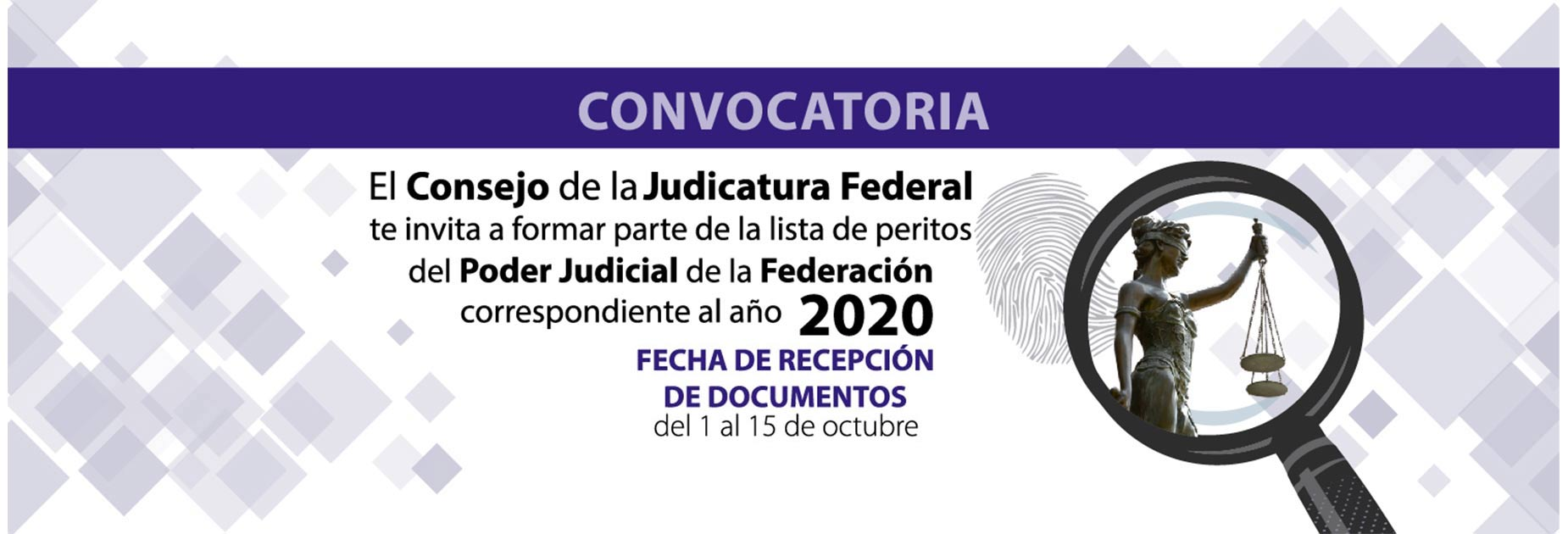 convocatoria peritos 2019